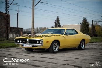 AUTO, SAMOCHÓD DO ŚLUBU | PIĘKNY DODGE CHARGER 1973r , Samochód, auto do ślubu, limuzyna Krotoszyn