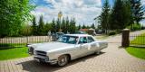 Auto do Ślubu Pontiac Ventura 1966r. (nie Cadillac/Mustang/Porsche), Tarnobrzeg - zdjęcie 2