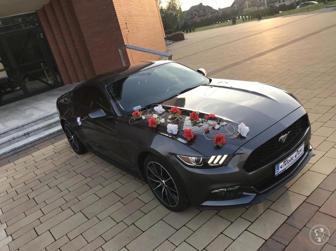 Ford Mustang S550 317KM 2015r Automat- NAJTANIEJ - 590zł, Mysłowice - zdjęcie 1