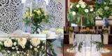 Pogodno-florystyka, usługi dekoratorskie, Lubsko - zdjęcie 5