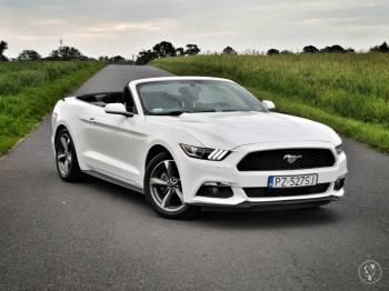 Ford Mustang Cabrio, kabriolet, Samochód, auto do ślubu, limuzyna Poznań