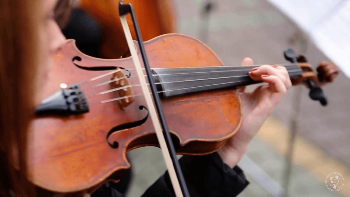 Muzyczna oprawa ślubu śpiew i skrzypce (Ave Maria, Hallelujah i in.), Poznań - zdjęcie 1