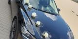 Czarna Mazda 6 do ślubu, Batorowo - zdjęcie 3