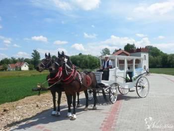 Bryczka/powóz do ślubu , Bryczka do ślubu Szczucin