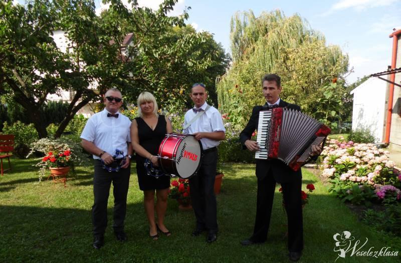 Zespół muzyczny Vitalis, Kutno - zdjęcie 1