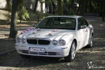 Jaguar XJ Vanden Plas - Auto do ślubu, Samochód, auto do ślubu, limuzyna Wieruszów