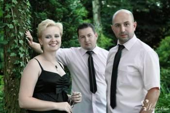 Zespół muzyczny INCOGNITO, Zespoły weselne Brzozów
