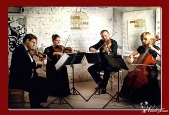 Kwartet smyczkowy Premiere, Oprawa muzyczna ślubu Tłuszcz