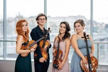 4MusicQuartett, Oprawa muzyczna ślubu Gołańcz