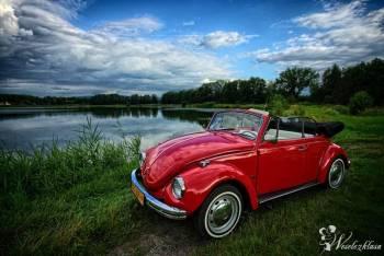 Garbus Cabrio do ślubu, zabytkowy kabriolet, Samochód, auto do ślubu, limuzyna Skoczów