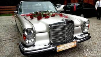 Auto do ślubu zabytkowy Mercedes, Samochód, auto do ślubu, limuzyna Nowe Warpno