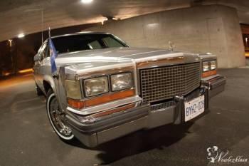 Cadillac, Samochód, auto do ślubu, limuzyna Bardo