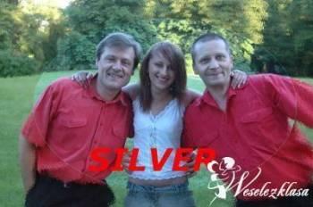 Zespół Muzyczny Silver, Zespoły weselne Leżajsk