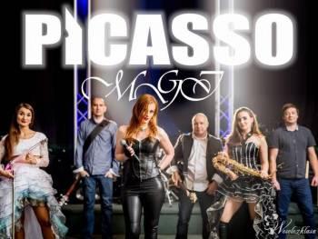 Picasso MGI: 6 osób LIVE + Cristal Violin Show !, Zespoły weselne Zgorzelec
