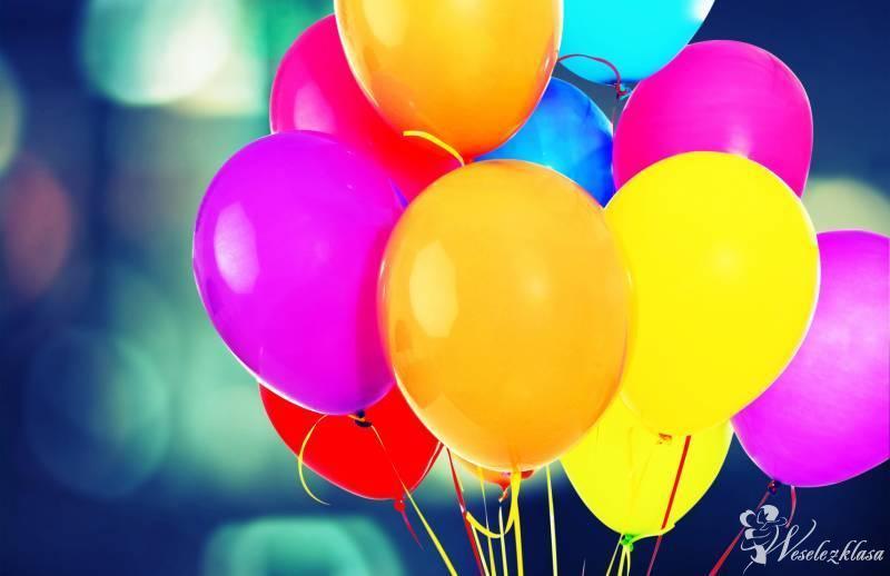 HeLove - Bajkowe dekoracje z balonów, Gorzów Wlkp. - zdjęcie 1