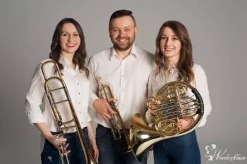 Trio blaszane na ślub, Oprawa muzyczna ślubu Drobin
