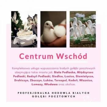Białe gołębie na ślub , Unikatowe atrakcje Włodawa