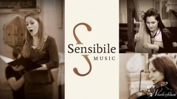 Sensibile Music - oprawa muzyczna z klasą !!!, Oprawa muzyczna ślubu Węgrów