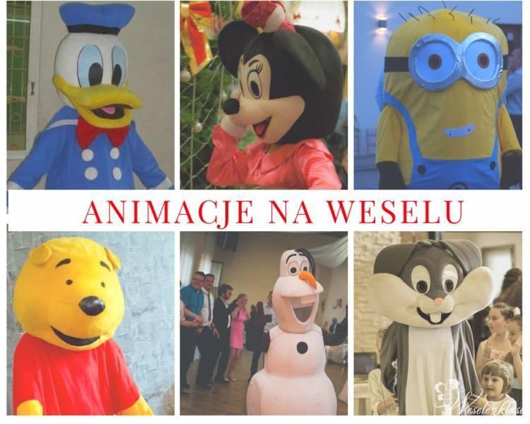 Animacje dla dzieci, animator na weselu, animator dla dzieci, Bielsko-Biała - zdjęcie 1