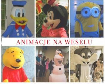 Animacje dla dzieci, animator na weselu, animator dla dzieci, Animatorzy dla dzieci Żywiec