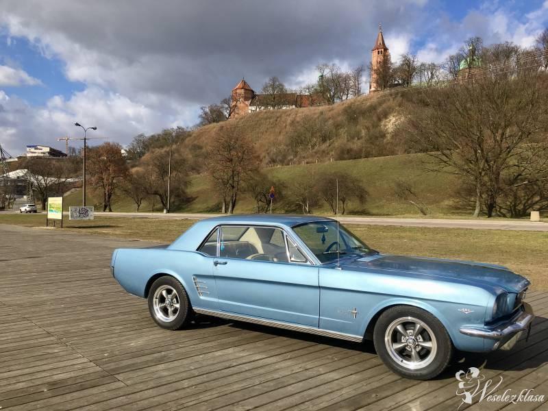 Auto do ślubu Mustang 1966 -4,7-V8, Płock - zdjęcie 1