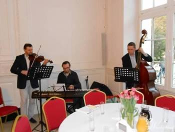 Zespół muzyczny Kameleon , Zespoły weselne Wojcieszów