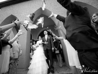 *Białe* gołębie na ślub Ha-Part,  Rybnik