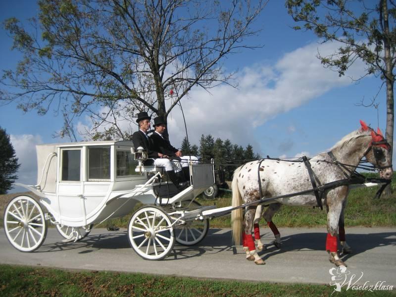 Bryczką do ślubu  powozem,imprezy okolicznościowe, Nowy Sącz - zdjęcie 1