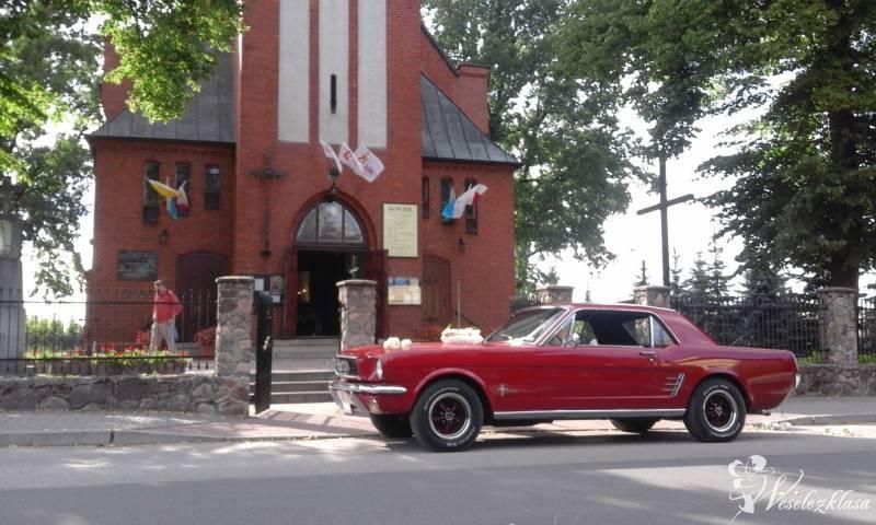 Ford Mustang 1965 V8,  Cadillac De Ville 1973 V8, Oldsmobile Rocket 8, Łochowo - zdjęcie 1