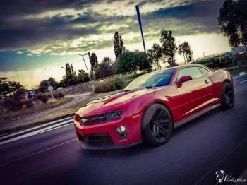 Samochód do ślubu Chevrolet Camaro, Samochód, auto do ślubu, limuzyna Toszek