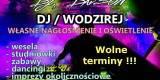 DJ DAvSON prezenter na WESELE  ATRAKCYJNE CENY !, Poznań - zdjęcie 2