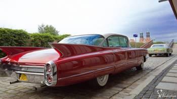 Na wesele auto, Cadillac, auto do ślubu, Samochód, auto do ślubu, limuzyna Odolanów