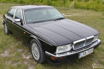 Ekskluzywna Limuzyna Klasy F Jaguar XJ40 Daimler do ślubu i na wesele!, Samochód, auto do ślubu, limuzyna Kańczuga