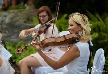 ArtON Quartet - mistrzowski kwartet smyczkowy na ślub, Oprawa muzyczna ślubu Lipno