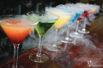 Barman na wesele mobilny Drink Bar Niskie ceny pełen profesjonalizm !, Barman na wesele Zelów