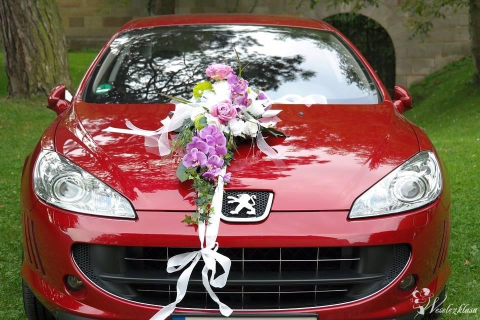 Najniższe ceny od 200 zł!!! BMW/ MERCEDES/ AUDI/ PEUGEOT/ CITROEN/, Ostrów Mazowiecka - zdjęcie 1