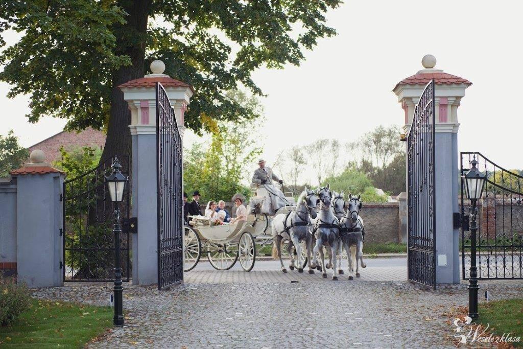 Bryczką do ślubu - wynajem powozu konnego, Małachowo - zdjęcie 1