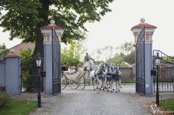 Bryczką do ślubu - wynajem powozu konnego, Bryczka do ślubu Poznań