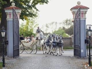 Bryczką do ślubu - wynajem powozu konnego,  Małachowo