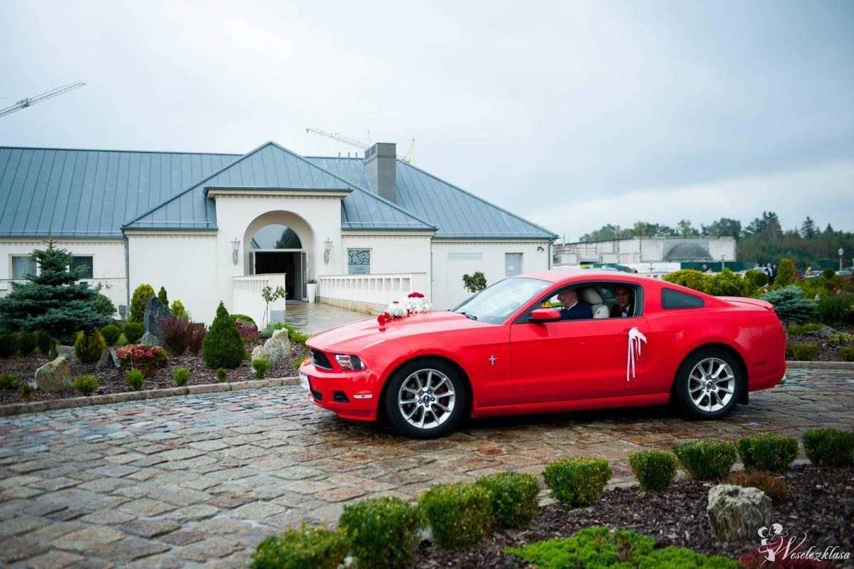 Mustangiem do ślubu Ford Mustang, Gdynia - zdjęcie 1