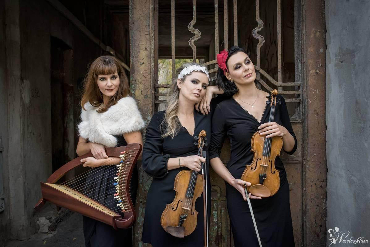 JOPEK Trio_skrzypce i harfa celtycka, Warszawa - zdjęcie 1