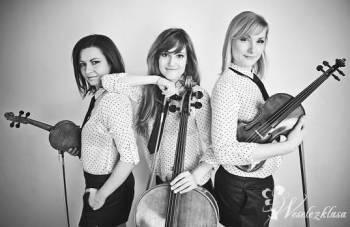 Oprawa muzyczna ślubu - Beatgirls String Trio , Skrzypce, Oprawa muzyczna ślubu Konin