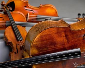 Stand-by Ensembles - wyjątkowa muzyka na wyjątkowe okazje!, Artysta Krotoszyn