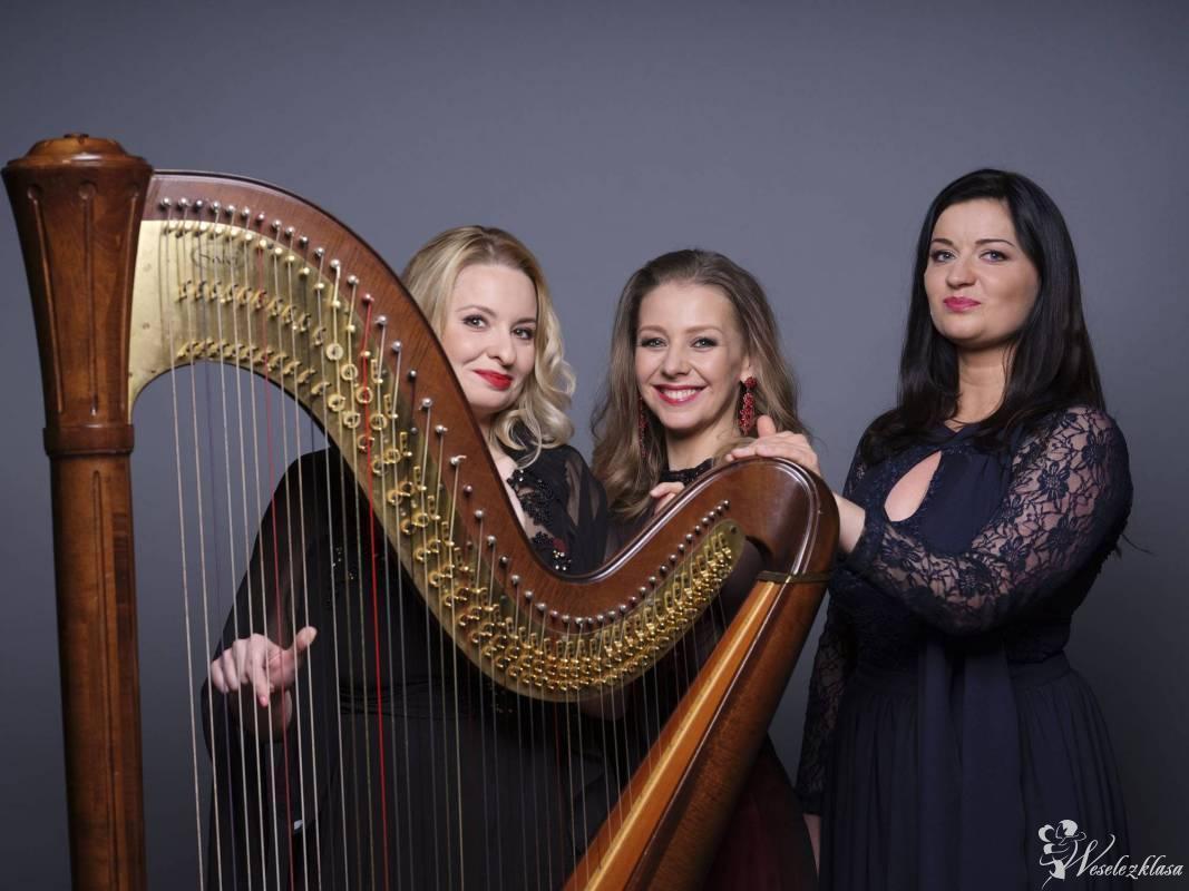 Trio Lyrico HARFA KONCERTOWA ŚPIEW SKRZYPCE, Poznań - zdjęcie 1