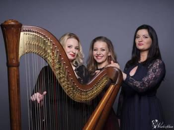 Trio Lyrico HARFA KONCERTOWA ŚPIEW SKRZYPCE, Oprawa muzyczna ślubu Rychwał