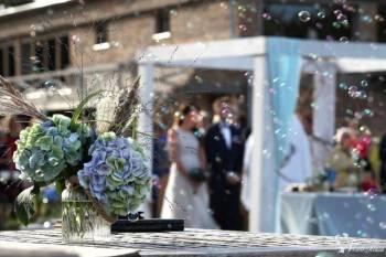 Wedding Sense- konsultant ze ślubnym zmysłem, Wedding planner Starogard Gdański