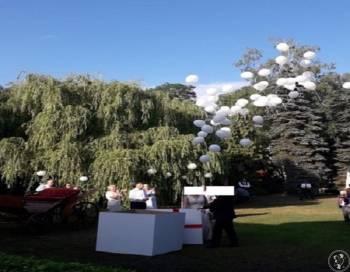 pudło z balonami z helem, balony hel na ślub, balony led, prezent ślub, Balony, bańki mydlane Stęszew