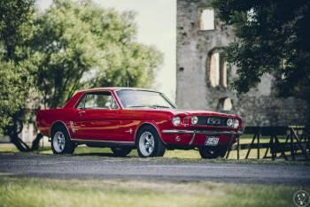 Ford Mustang 1966 r.- SpecialCars, Samochód, auto do ślubu, limuzyna Knurów