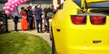 Camaro do ślubu Transformers Bumblebee auto do ślubu auto na wesele, Kielce - zdjęcie 7