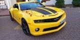 Camaro do ślubu Transformers Bumblebee auto do ślubu auto na wesele, Kielce - zdjęcie 8